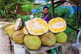 Fresh jackfruit on sale at a street stall in SE Asia